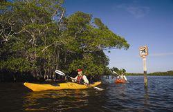 Blueway trail canoeing