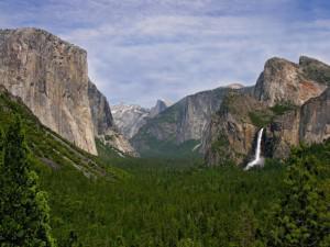 Yosemite & Mariposa County