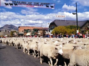 Trailing-of-the-Sheep-Festival