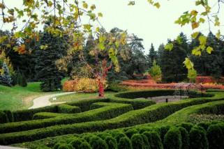 The Morton Arboretum's Maze Garden