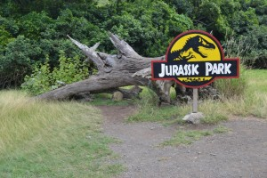 Jurassic Park Set Prop