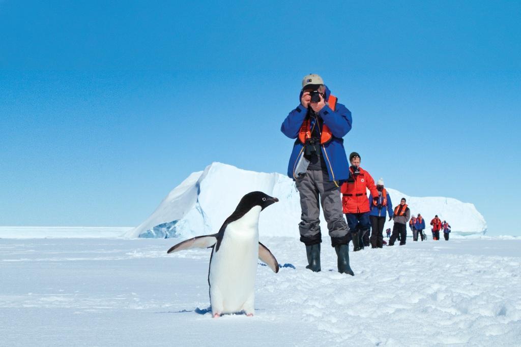 Lindblad Antarctica. ©Michael S. Nolan for Lindblad Antarctica