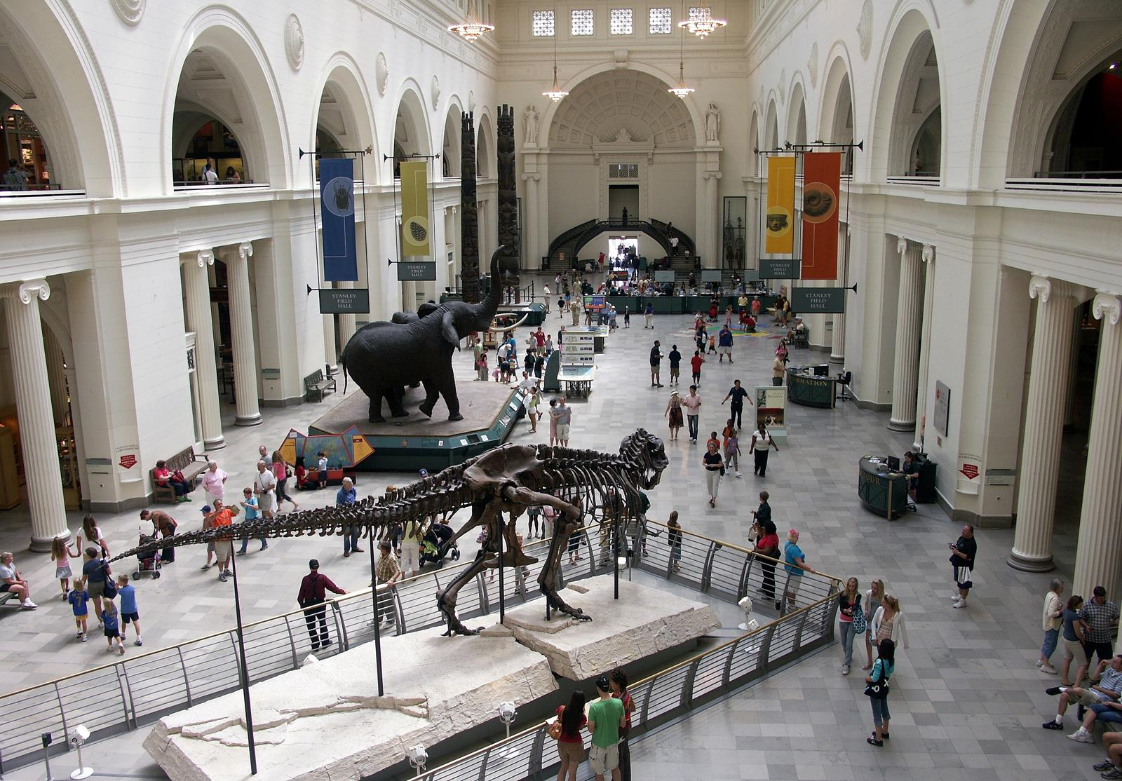 Natural Science And History Museum In Chicago