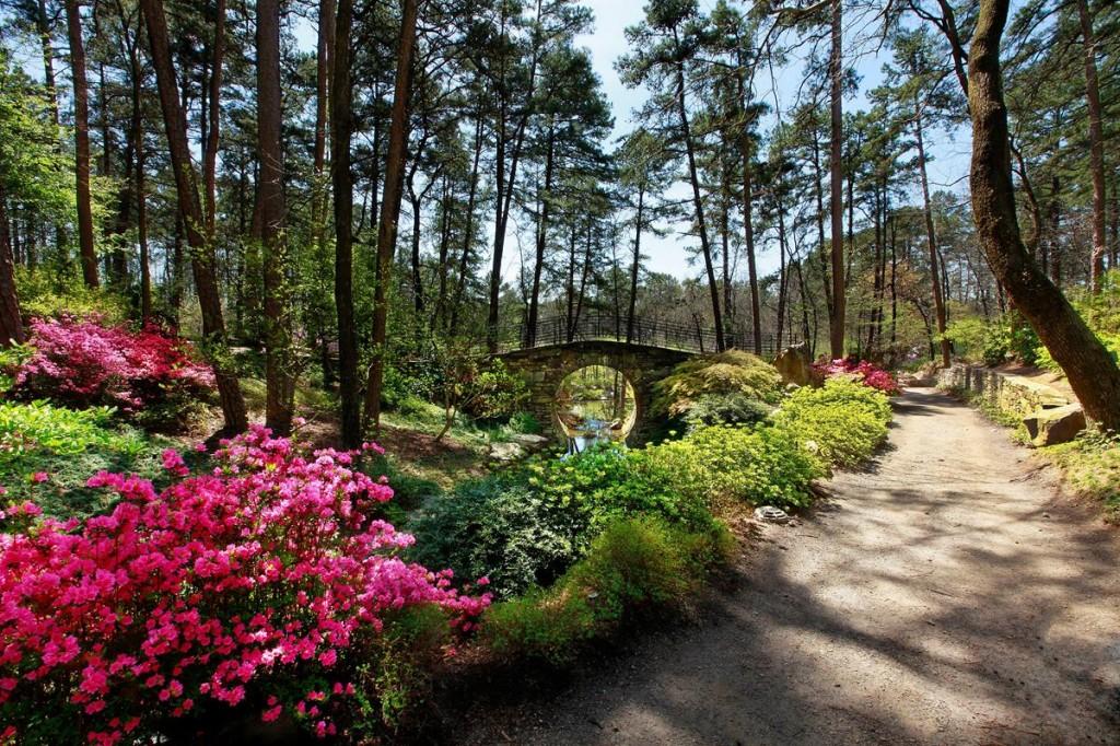 Bridge of the Full Moon, Garvan Woodland Gardens