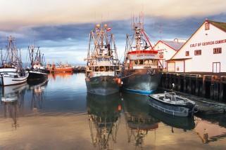 Steveston-Boats-2