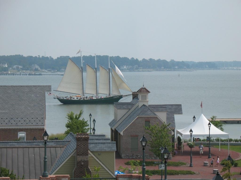 Alliance sailing