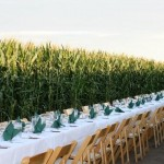 Cuisine-in-the-Corn