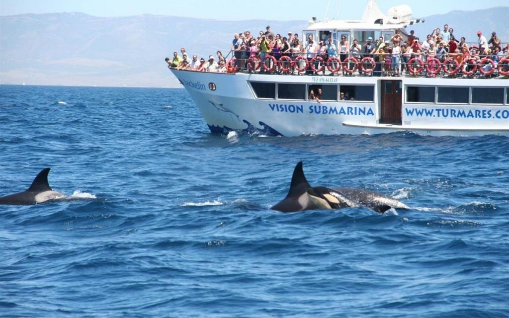 Algeciras, Spain: Gateway to Discovery
