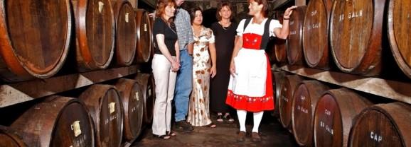 Following Arkansas' Wine Trail