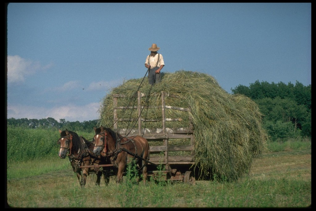 Frozen in time: Scenes out of yesteryear are common in Wisconsin's Amish communities.