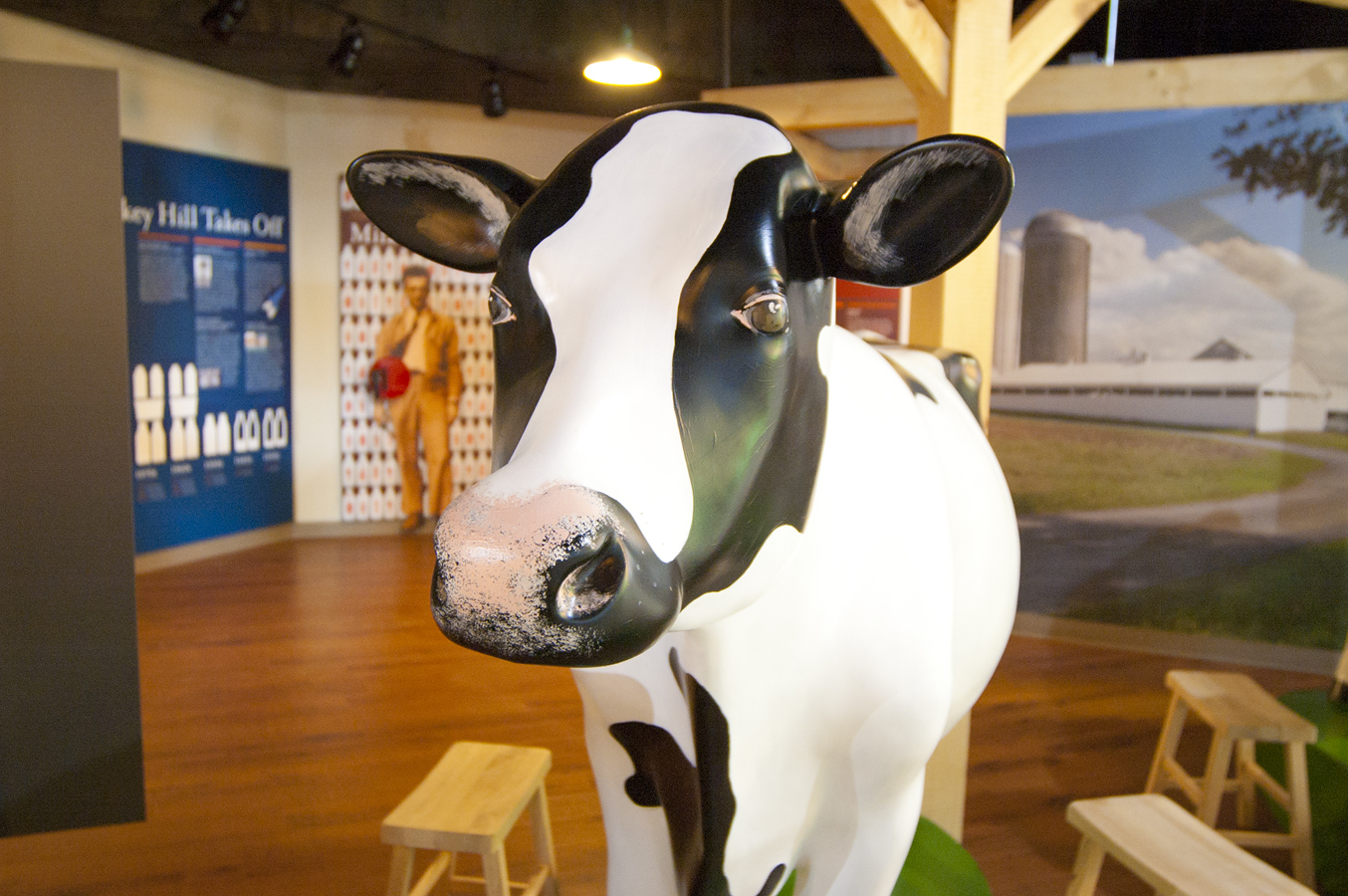 Milking Cow Exhibit. Turkey Hill Experience