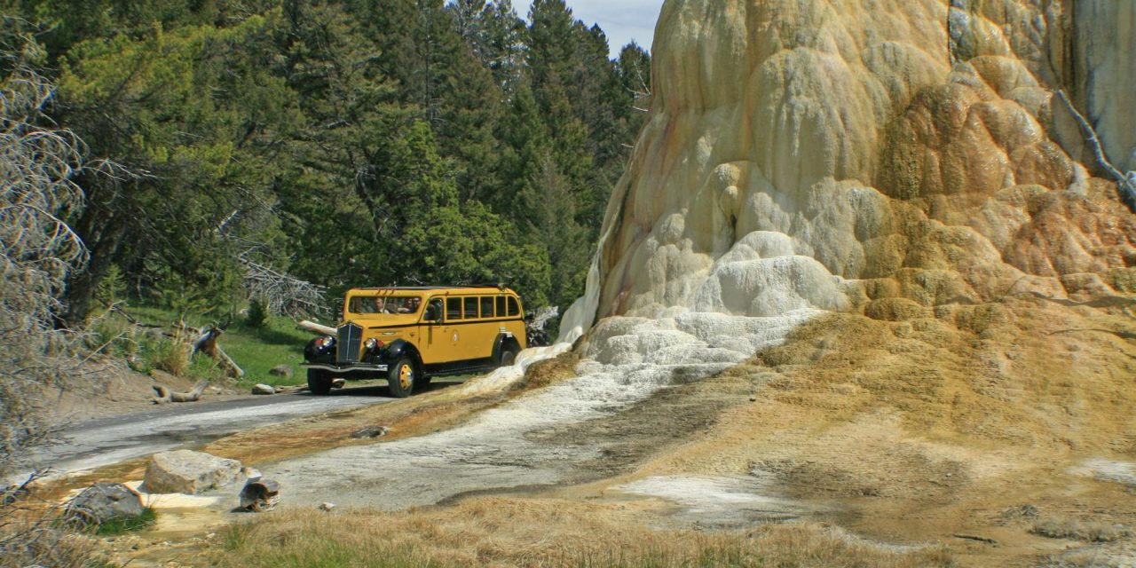 Yellowstone – A Park for all Seasons