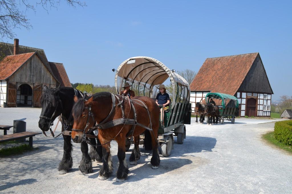 At the Westphalian Open-Air Museum in Detmold, 90 buildings celebrate German lifestyles of the past.