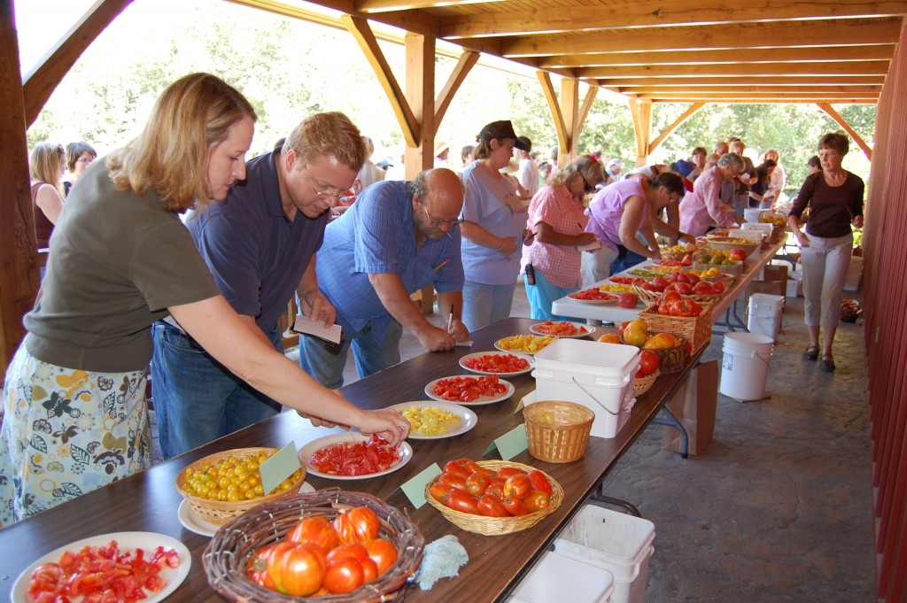 tomato tasting at Seed Savers brings thousands to Decorah each September