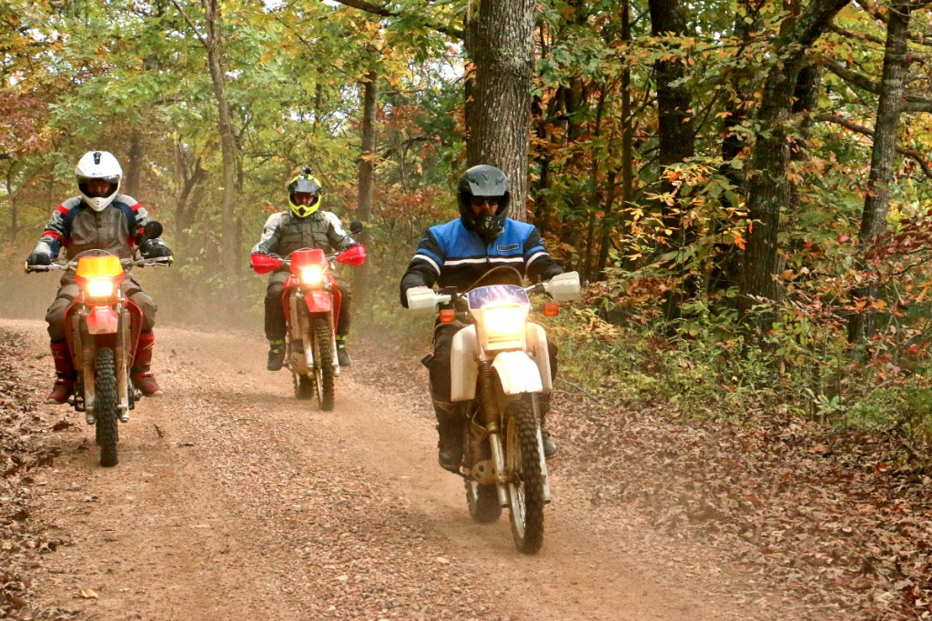 Off_Road_Motorcycles_Fifty_Six_Spann_8010