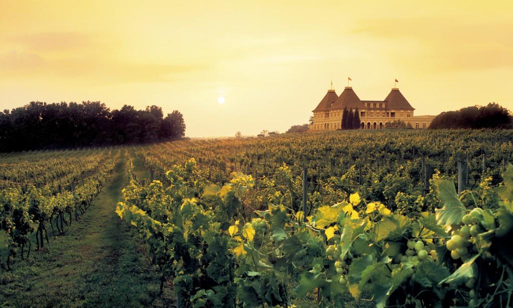 Chateau Elan Signature-Winery