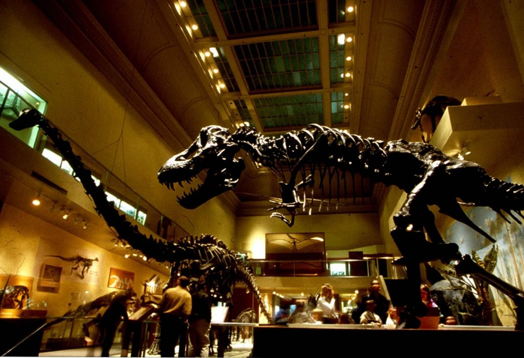 Smithsonian- Museum of Natural History- Dino Hall