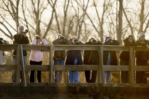 Crane watching on the hike bike bridge at Ft Kearney State Park