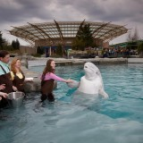 16 Must Visit U.S. Aquariums in 2016