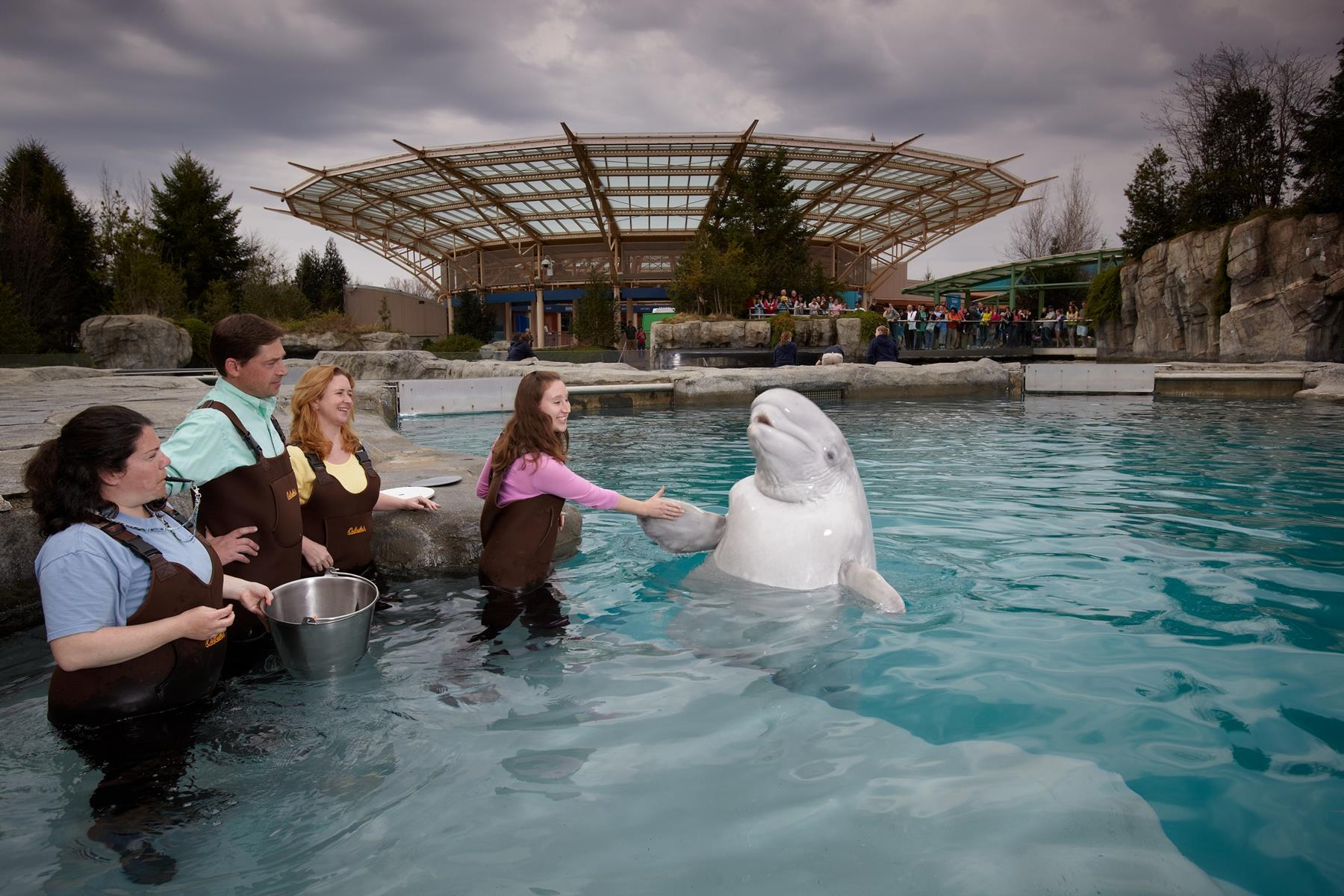 16 Must Visit U.S. Aquariums in 2016