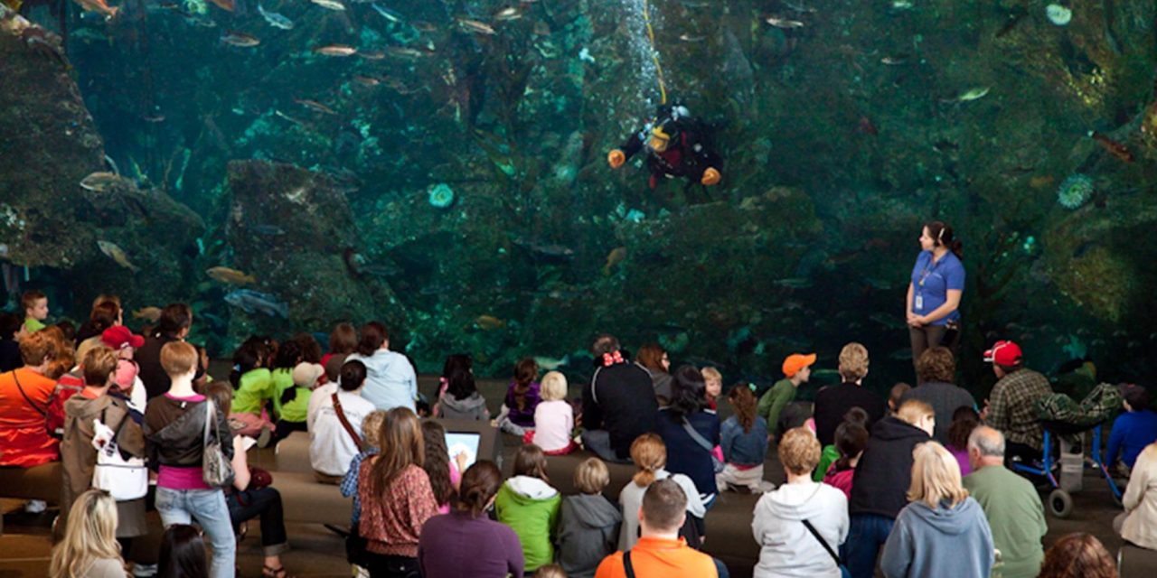 Outstanding Aquariums in the West