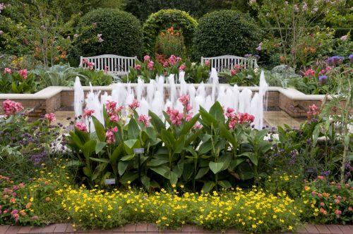 Botanic New Circle Gardenphoto