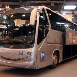 Bus Sales on the Rise