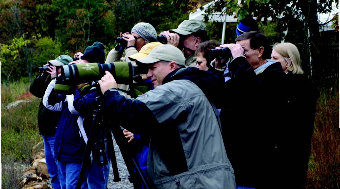 Soaring in Popularity: 8 Premium Birding Destinations
