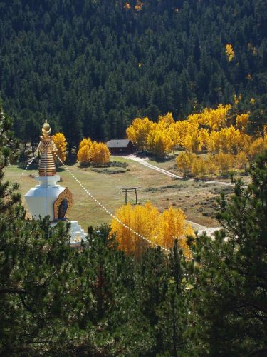 Greg Smith FallStupa