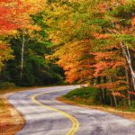 na_new-england_autumn-leaves-on-winding-road_shutterstock_103830992