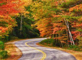 7 Globus Fall Foliage Trips