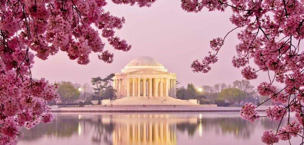 na_washington-dc_jefferson-memorial_cherry-blossoms_shutterstock_1255227