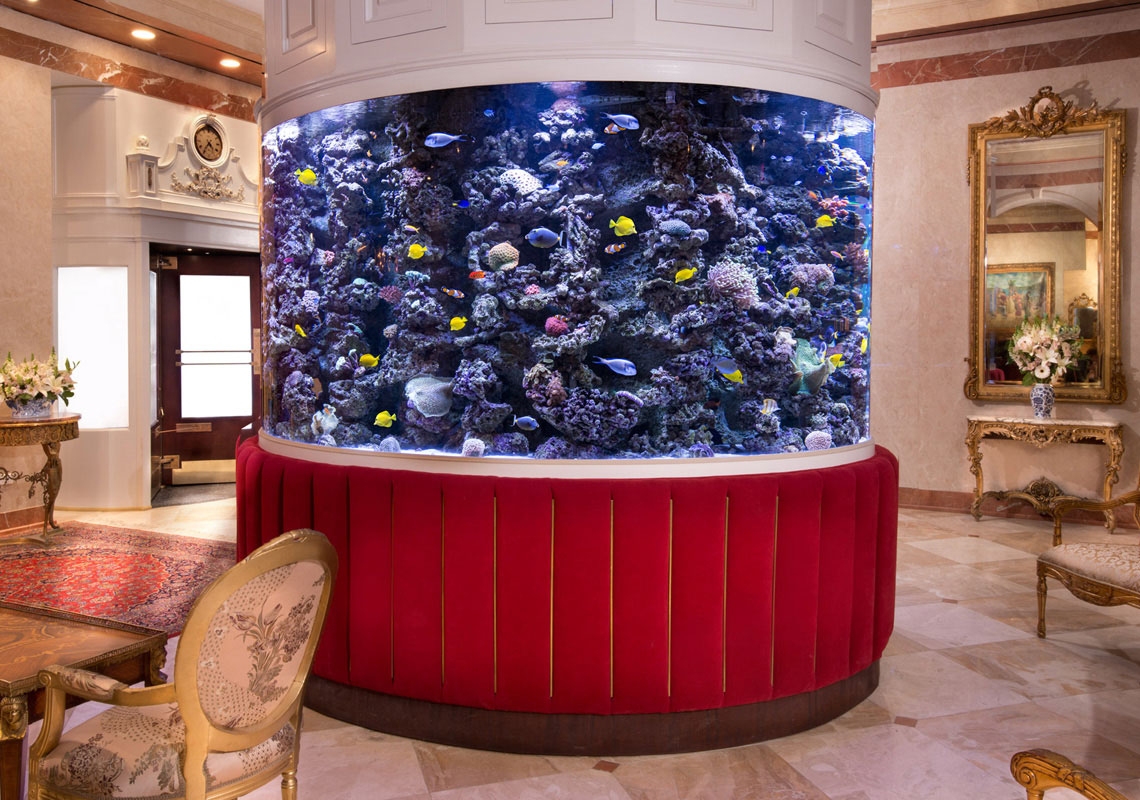 The kimberly hotel manhattan luxury pad for Fish hotel tank