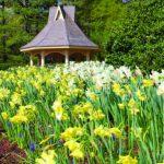 huntsville-gardens