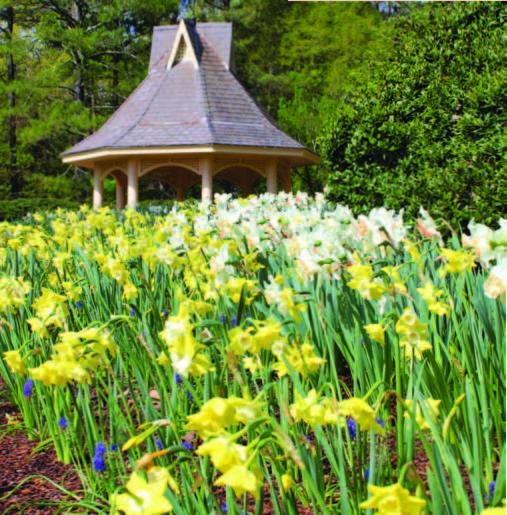 Botanical Gardens Huntsville Huntsville Botanical Garden Huntsville Botanical Garden Al Top