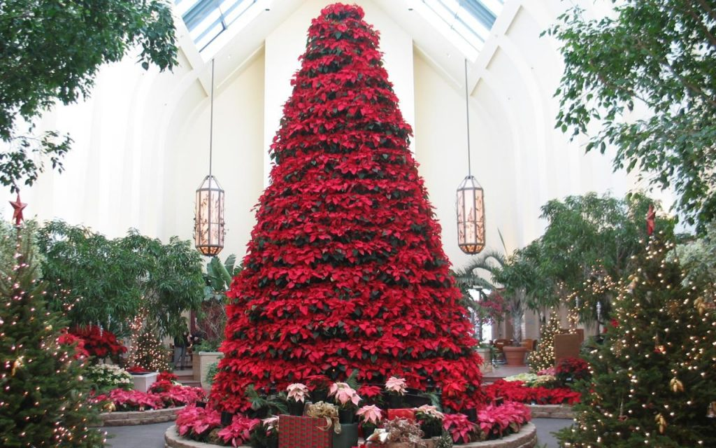 Image result for Holiday Happening omaha lauritzen gardens