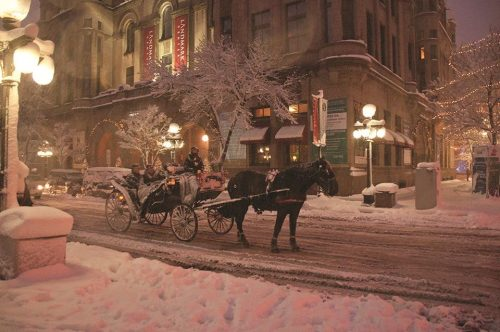Carriage Ride in Downtown St. Paul