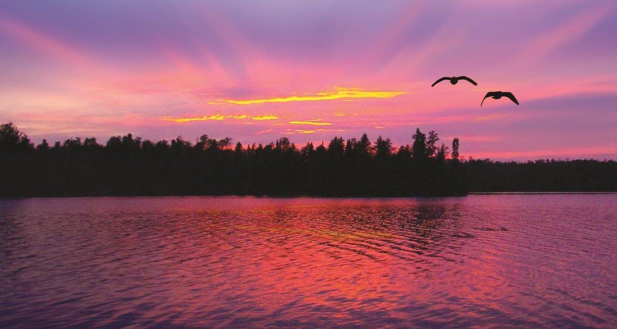 Minnesota's Natural Splendor