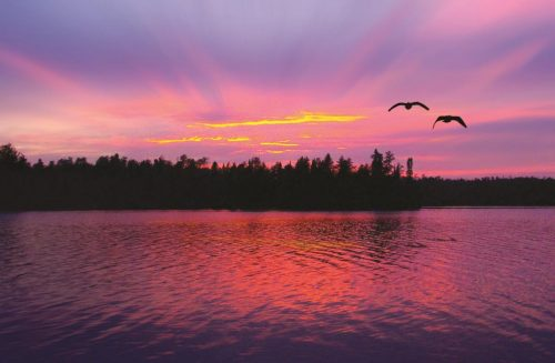 two-birds-flying-over-the-boundary-waters-at-sunset_565713_peter-de-sibour