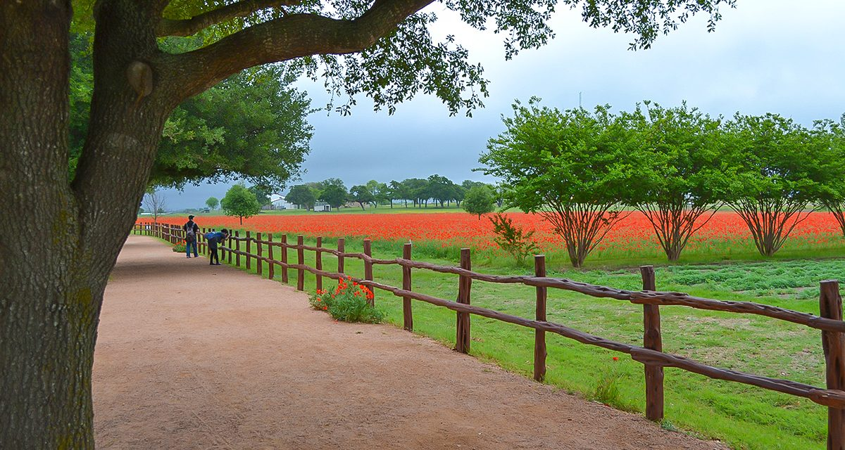 Texas Hospitality and Impressive Attractions Lure Groups to Fredericksburg