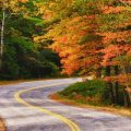 Vibrant Fall Foliage Views in the Northeast