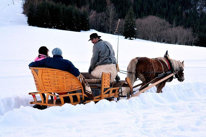 austrian sleigh