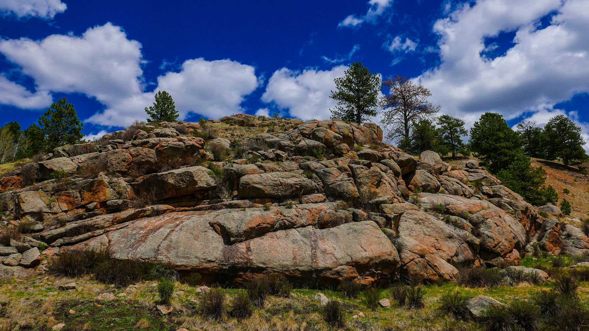 Florissant Fossil Beds National Park, Colorado