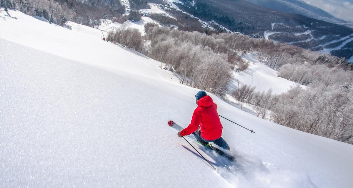 Group Ski Resorts: the Beasts of the East
