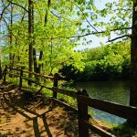 Explore These Indiana State Parks on Your Next Group Trip