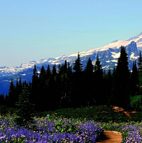 5 Memorable Days in Washington State
