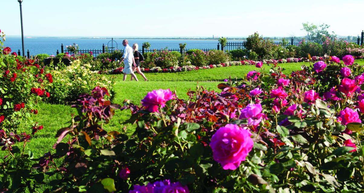 Gardens Around the State