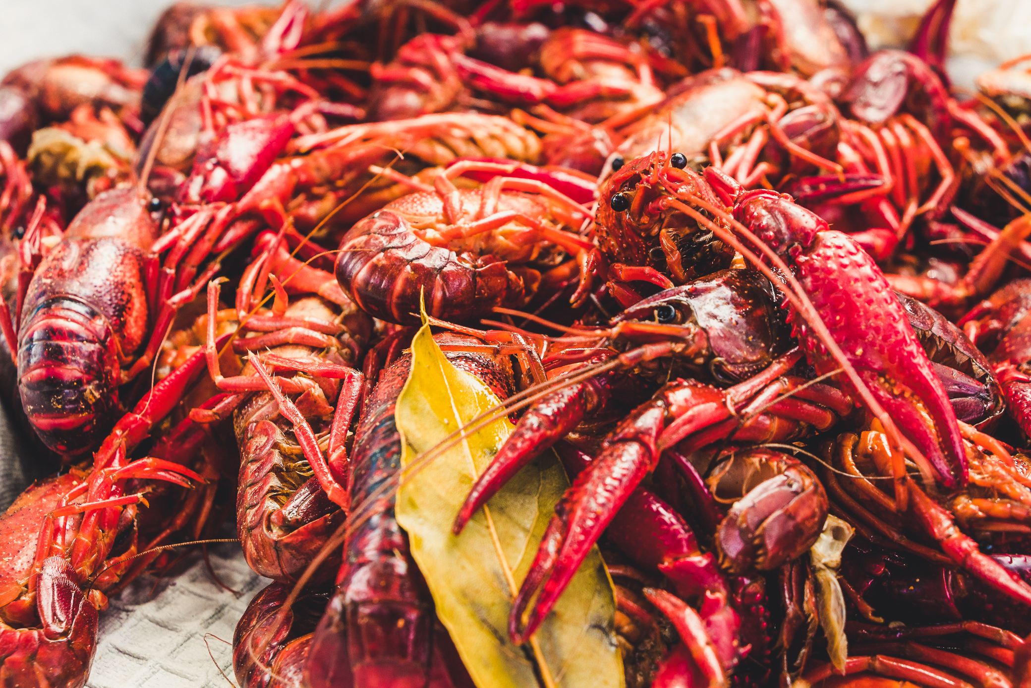 New Orleans Seafood Festival 2019 5 New Orleans Food Festivals   Leisure Group Travel