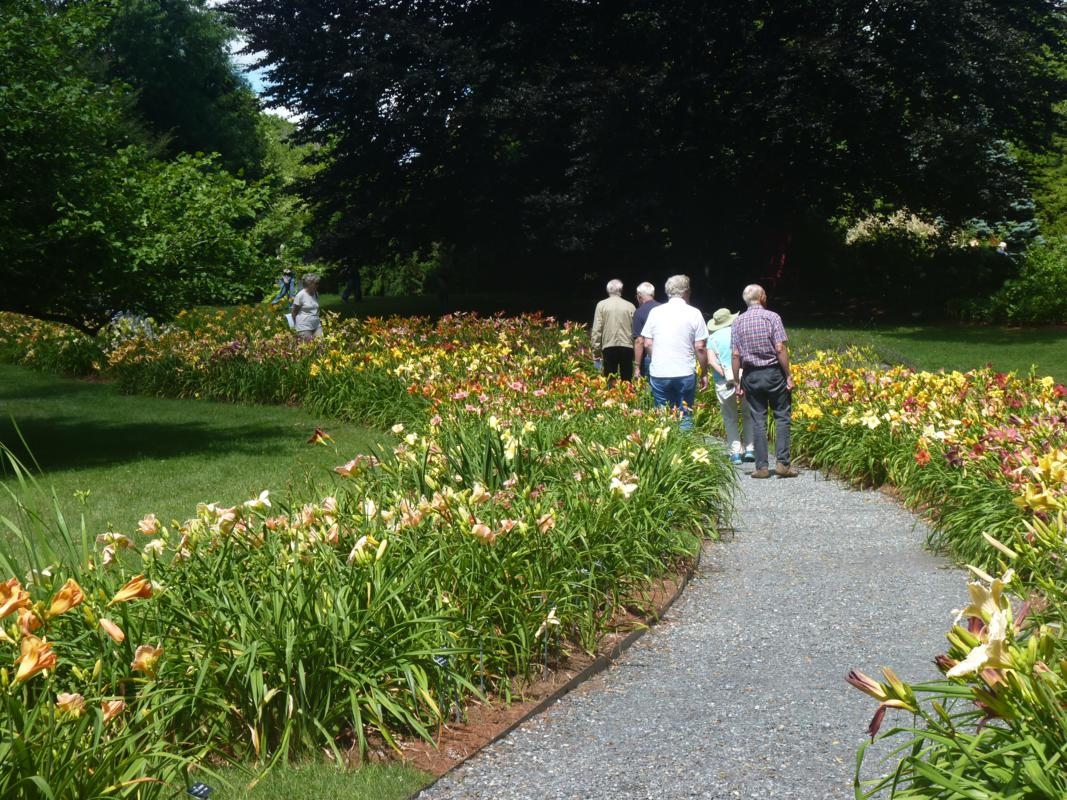 9 Massachusetts Gardens That Naturally Fit Any Itinerary