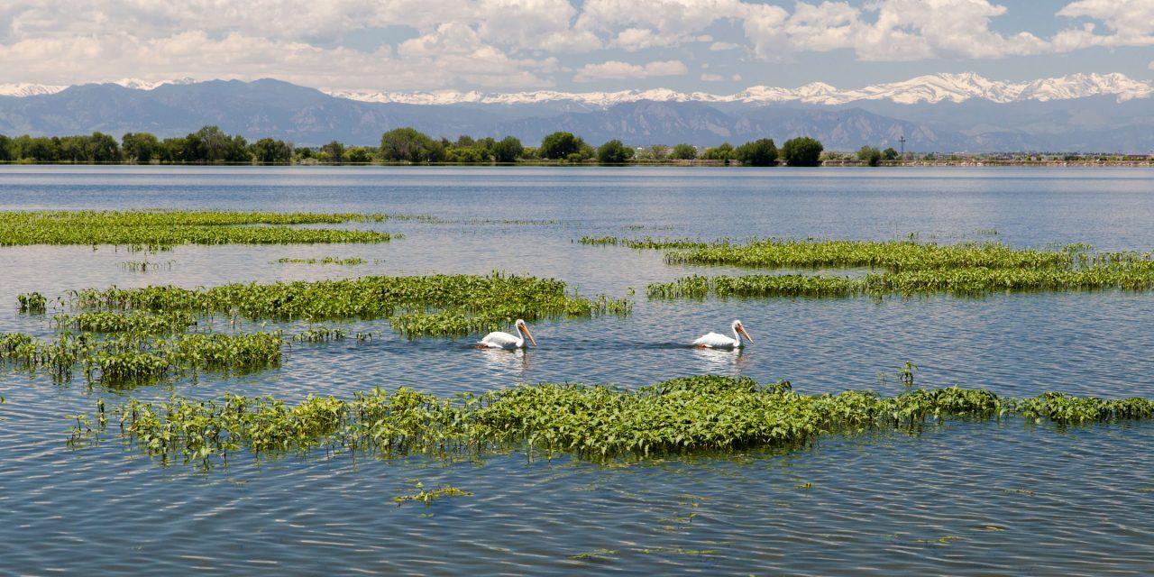 8 Top Colorado State Parks